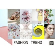 HONKONG 爱时尚服装纺织品联盟有限公司开发产品