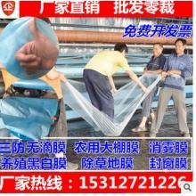 农业大棚塑料布厂家直销批发